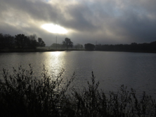 overcast morning at Oak Point