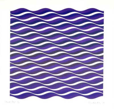 Complementary Color Illusions That Complementary Colors