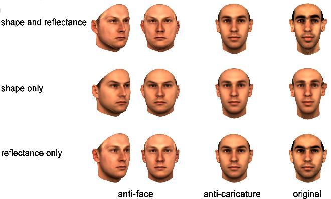 Race facial recognition