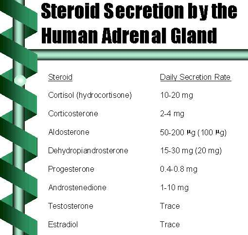 what are steroid and peptide hormones